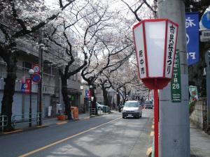 tokyo-march-april-2009-071