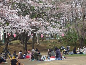tokyo-march-april-2009-072
